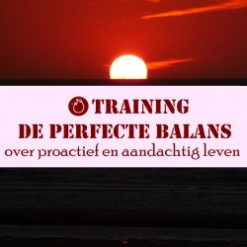 Training de perfecte balans_1