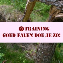 Training goed falen doe je zo_1